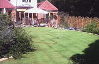 New lawn in Croydon
